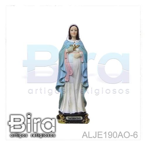 nossa senhora gravida, resina, santos, imagens
