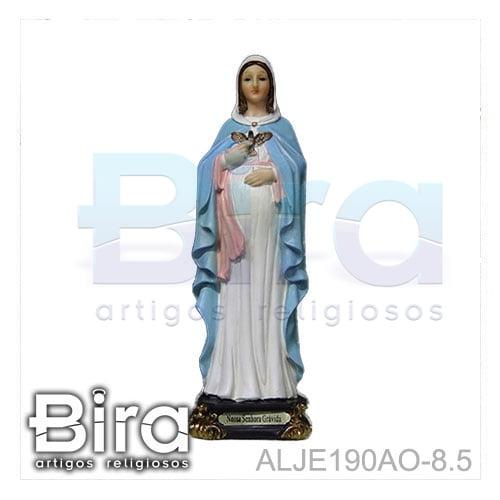 nossa senhora gravida, santos, imagens, resina